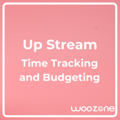 UpStream Time Tracking and Budgeting